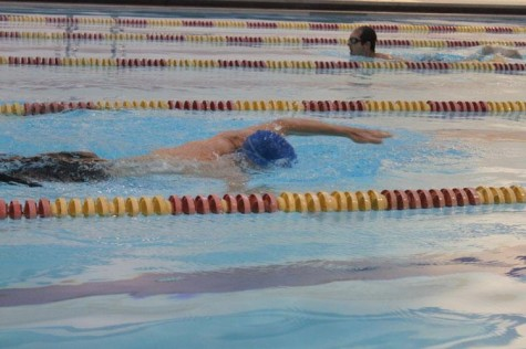 Student sets out to start swim club