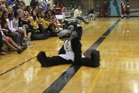Fan Fest kicks off basketball season