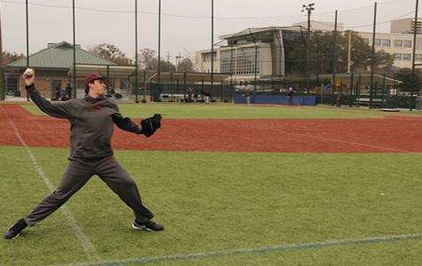 Baseball team seeks dominance in 2015