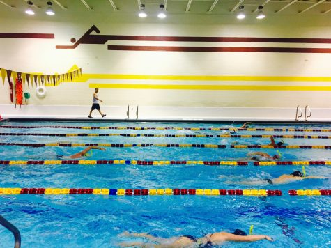 Loyola swimming joins new conference