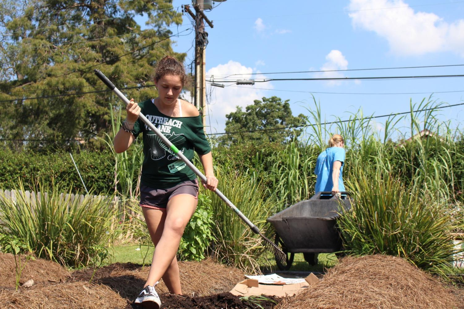 Renata Massion, Tulane University junior majoring in political economy and international development, spreads mulch between rows of crops at Samuel J. Green Charter School's garden in uptown New Orleans. Massion works at the site through a partnership with Edible Schoolyard New Orleans, a non-profit aimed at encouraging children to make healthy connections between food and school. Photo credit: India Yarborough
