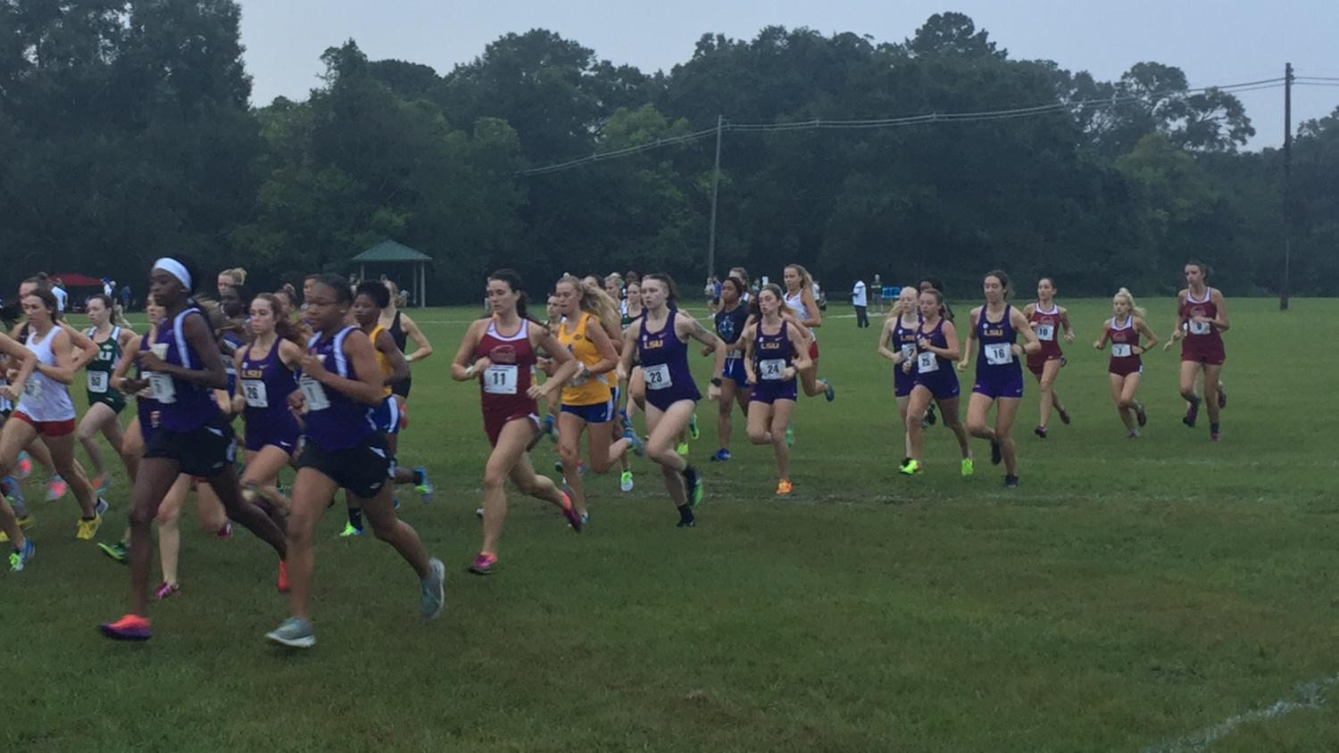 The Wolf Pack compete at the LSU Cross Country Festival in September 2017.
