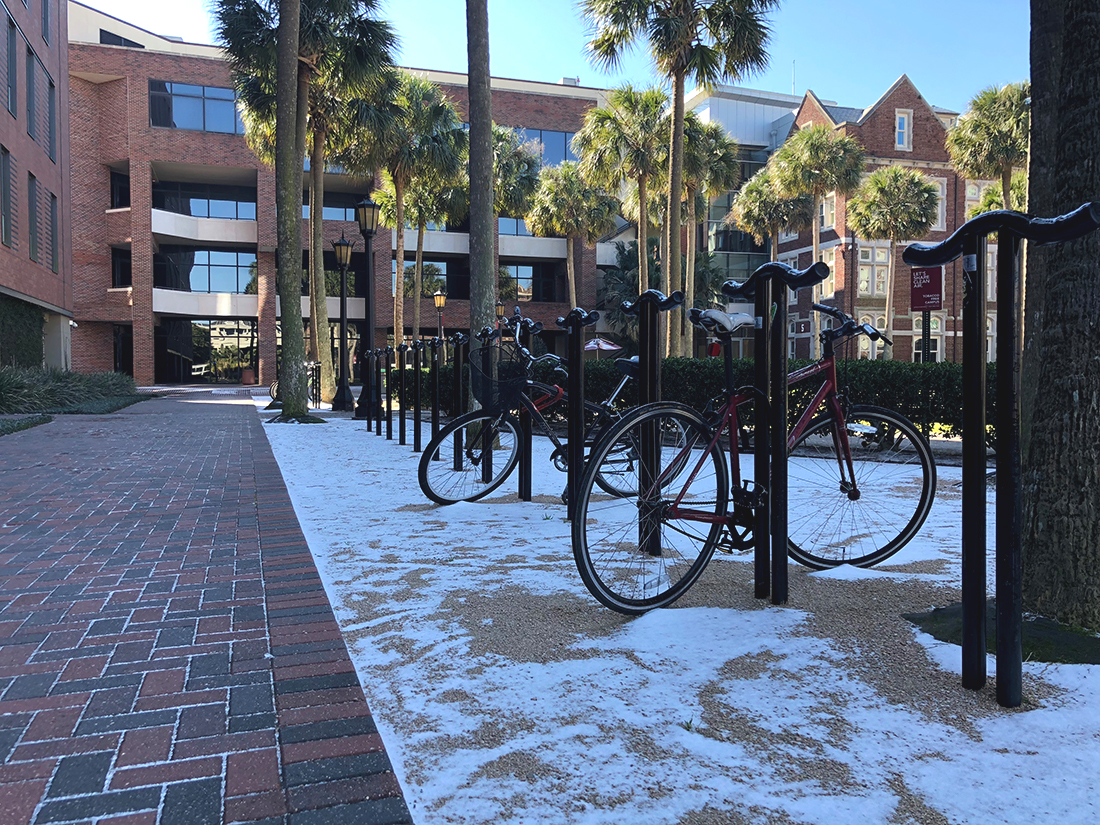 While the Loyola campus was covered in ice, off-campus students experienced issues like frozen pipes during New Orleans' January freeze. Photo credit: Paulina Picciano