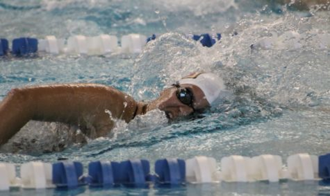 Swiming teams finish strong at NAIA National Championship