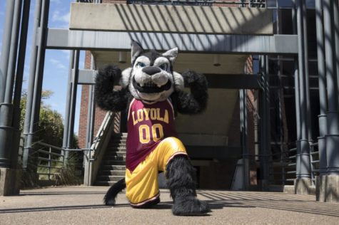 Havoc the Wolf shines in the spotlight