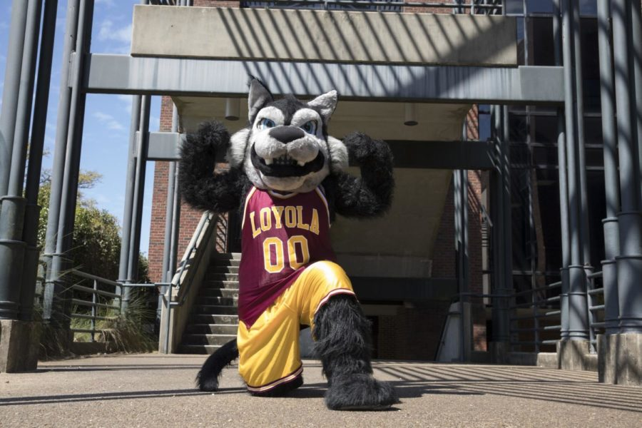 Havoc+the+Wolf+has+served+as+Loyola%E2%80%99s+mascot+since+2006+after+a+re-branding+by+the+Loyola+New+Orleans+Athletic+department.+Loyola+has+featured+a+wolf+mascot%2C+either+live+and+costumed+student%2C+since+1928.+Photo+credit%3A+Cristian+Orellana