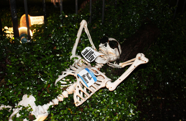 %27Lazy+Bones%27+at+The+Skeleton+House+Photo+credit%3A+Hannah+Renton