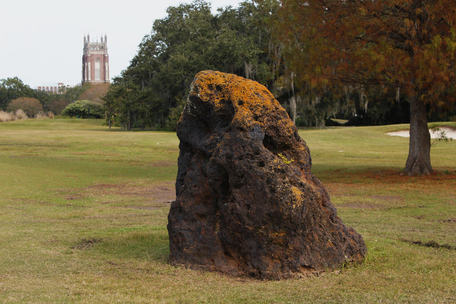This iron ore rock in the Audobon Park Golf Course, commonly mistaken as a meteorite, is only survivng remant of the New Orleans's World Cotton Centennial. Photo credit: Cristian Orellana