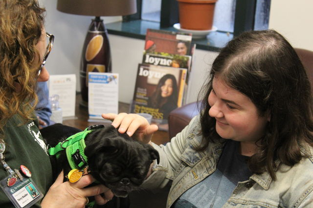 Terry+Stadler%2C+volunteer+for+the+Visiting+Pet+Program%2C+introduces+Lucille+the+Pug+to+a+Loyola+student+in+the+Student+Success+Center+on+Feb.+20.