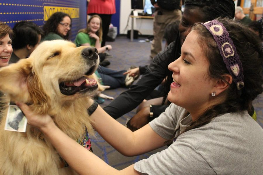 Tallulah%2C+a+dog+from+the+Visiting+Pet+Program%2C+enjoys+an+ear+rub+from+a+Loyola+student+during+her+visit+to+the+Student+Success+Center.+Photo+credit%3A+Rose+Wagner