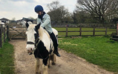 JC Does Sports Abroad: Equestrian
